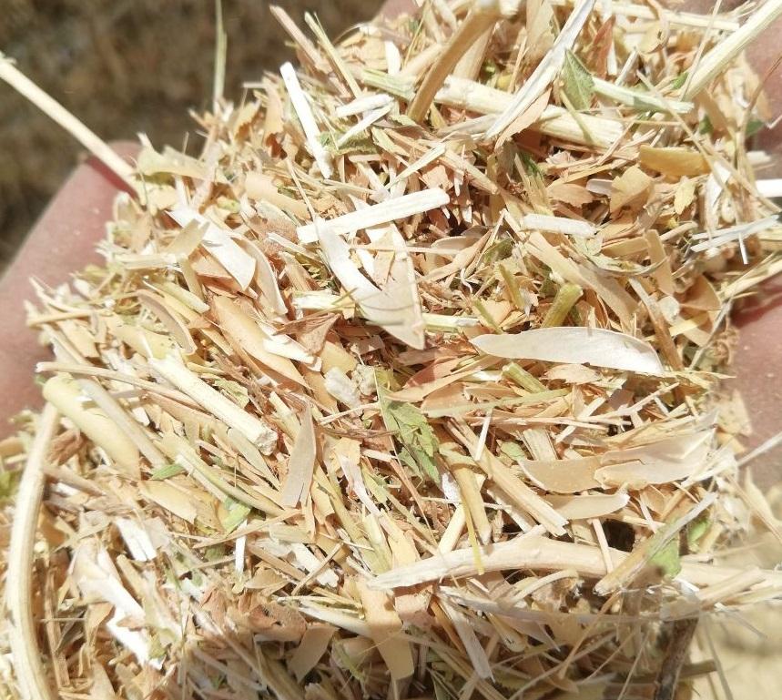 Chickpea straw
