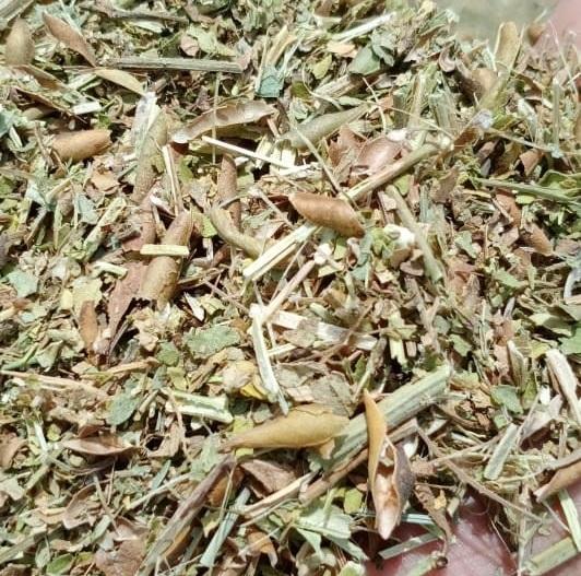 Green Mash straw